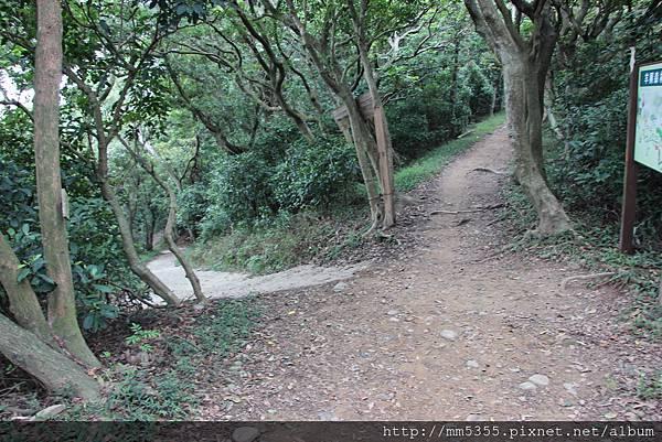 1022羊稠森林步道 (36).JPG