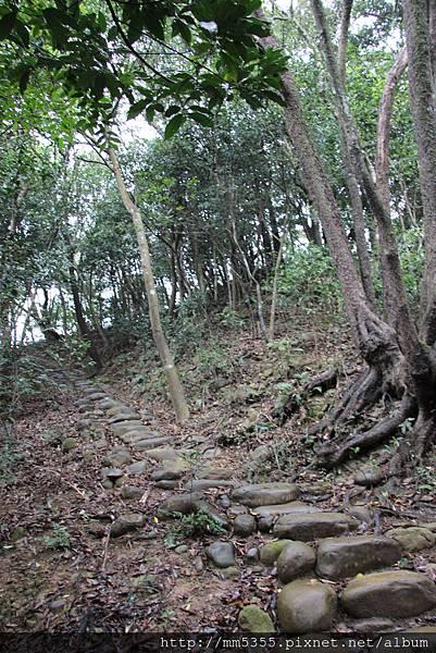 1209新埔飛龍步道 (9).JPG