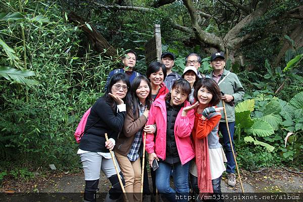 0121草嶺山 (10).JPG