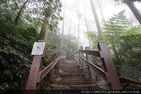 0224五指山 (7).JPG