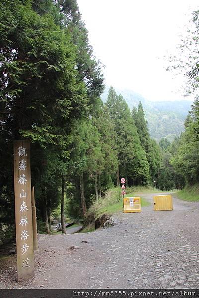 0512大鹿林道西線 (16).JPG