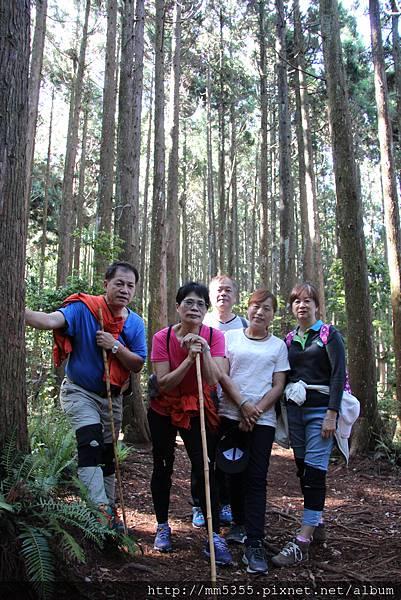 0513野馬瞰山 (12).JPG