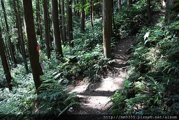 0519高台山JPG (4).JPG