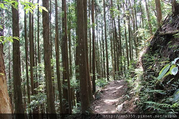 0519高台山JPG (25).JPG