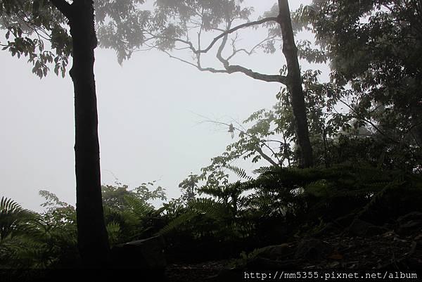 0519高台山JPG (46).JPG
