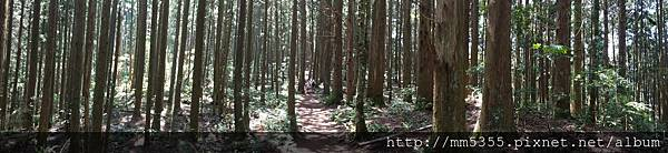 0519高台山 (3).jpg