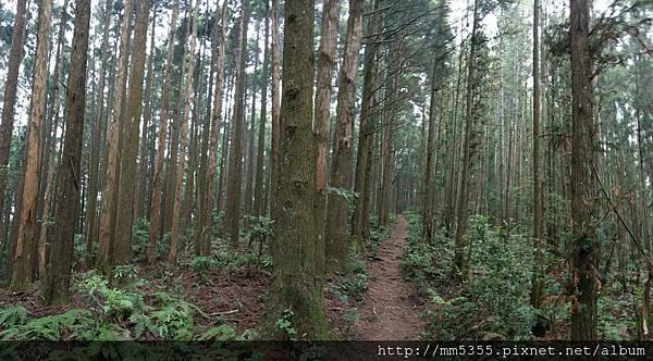 0519高台山 (5).jpg