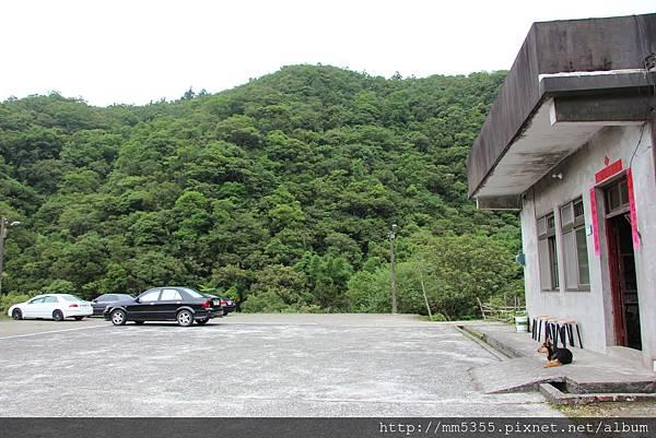 0610坪溪頭 (60).JPG