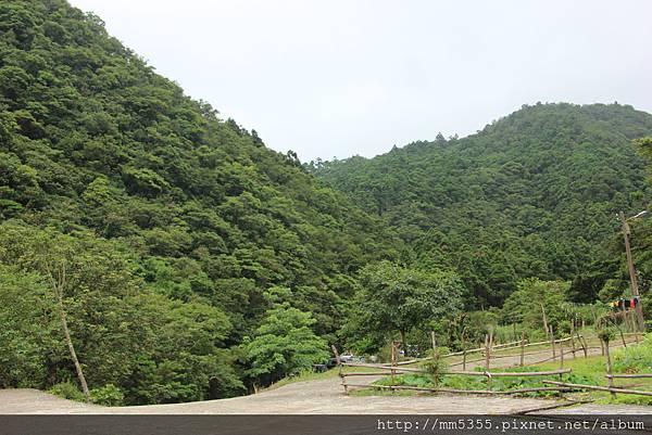 0610坪溪頭 (62).JPG