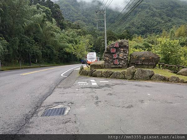 0616遊阿里山迷糊步道 (3).jpg