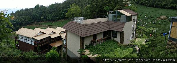 0616遊阿里山迷糊步道 (76).jpg