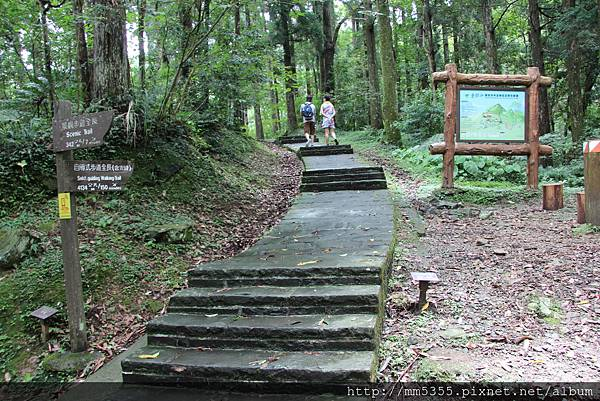 0623東眼山自導式步道 (64).JPG