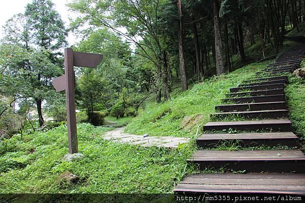 0623東眼山自導式步道 (67).JPG