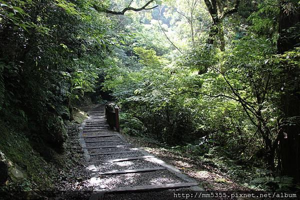 0728東眼山親子峰步道 (7).JPG