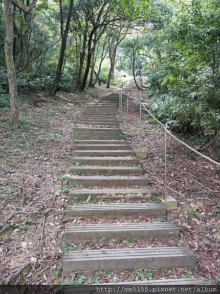 0811四分尾山 (16).jpg