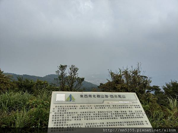 0811四分尾山 (29).jpg