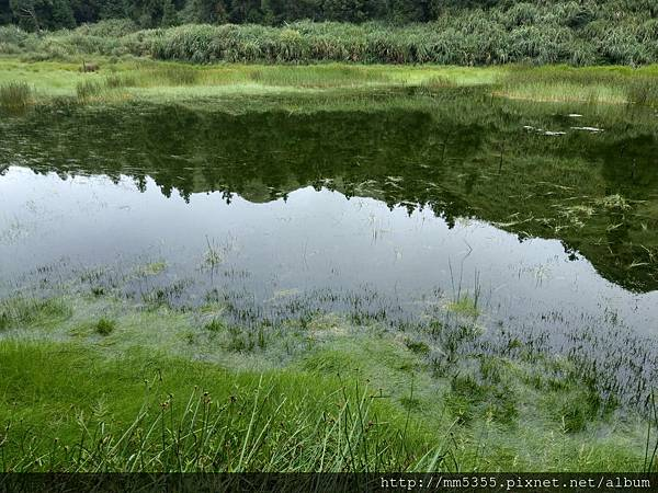 0825夢幻湖 (12).jpg