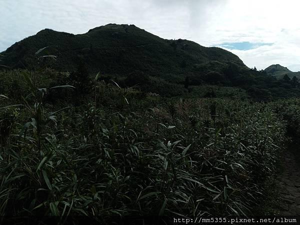 0901七星山 (16).jpg