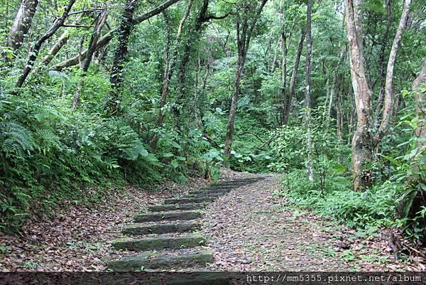 0915仁山植物園 (10).JPG