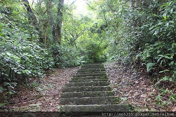 0915仁山植物園 (11).JPG