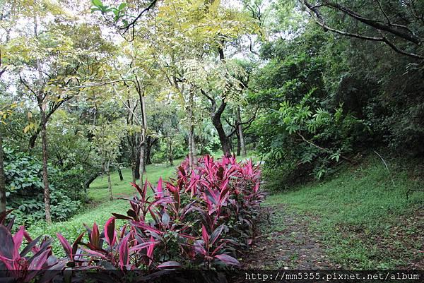0915仁山植物園 (24).JPG