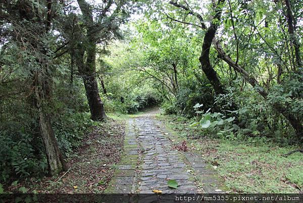 0915仁山植物園 (26).JPG