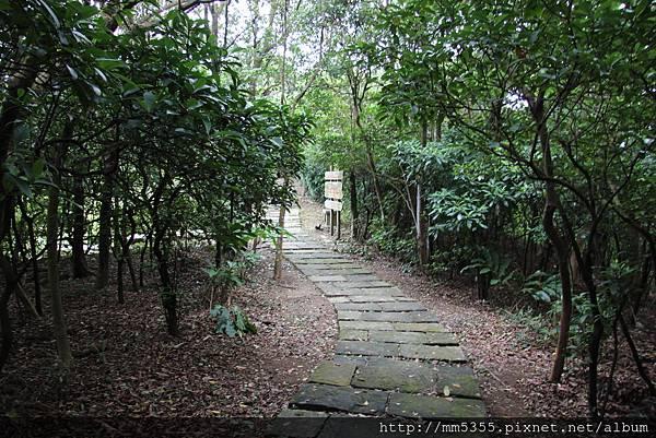 1006海興步道、大武崙山 (68).JPG