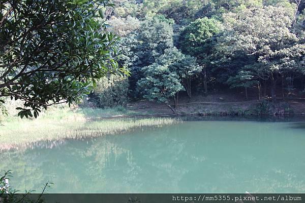 1201夢湖 (12).JPG
