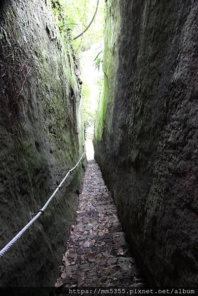 0120金龜岩、猴洞、一線天、仙洞步道 (33).JPG