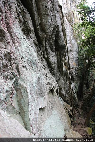 0126白石山 (38).JPG