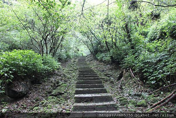 0420內平林山 (9).JPG