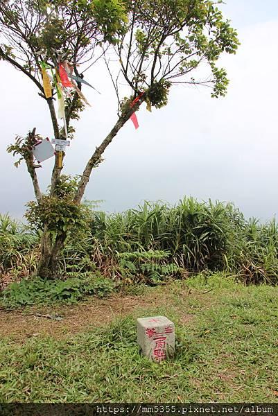0420內平林山 (80).JPG