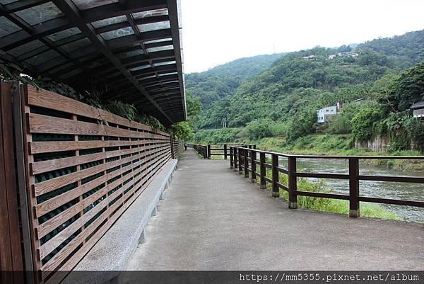 I0601逮魚堀自行車道水柳腳步道 (13).JPG