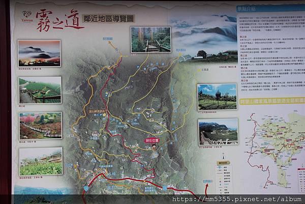 0608頂石棹步道群 (25).JPG