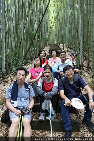 0608頂石棹步道群 (35).JPG