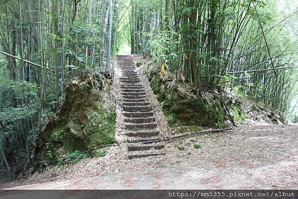 0608頂石棹步道群 (39).JPG