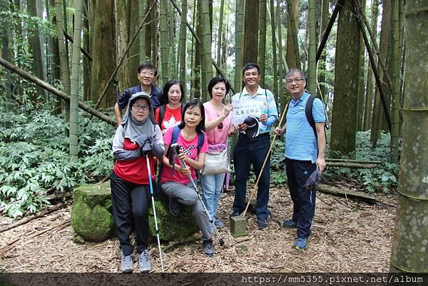 0608頂石棹步道群 (49).JPG