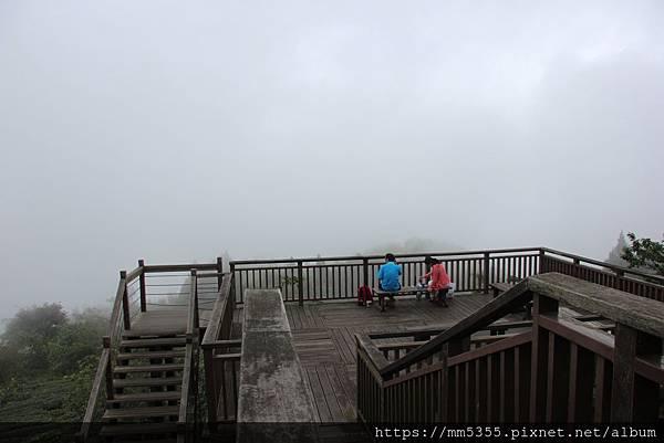 0608頂石棹步道群 (76).JPG