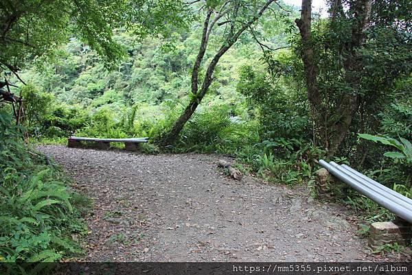0707紅河谷步道 (19).JPG