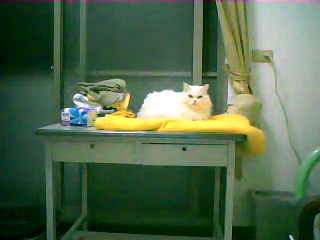 Video call snapshot 12.png