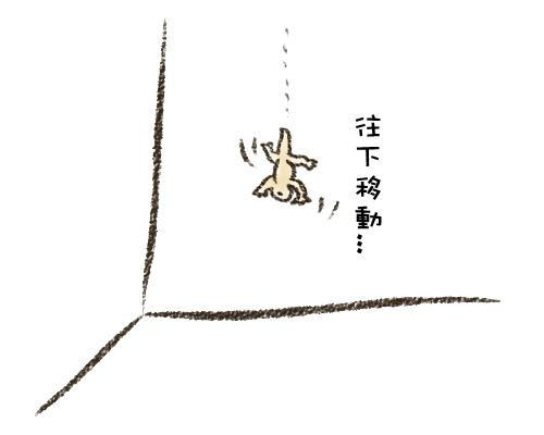 25-12.jpg