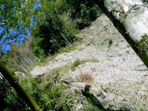 古道33-崩塌的山壁