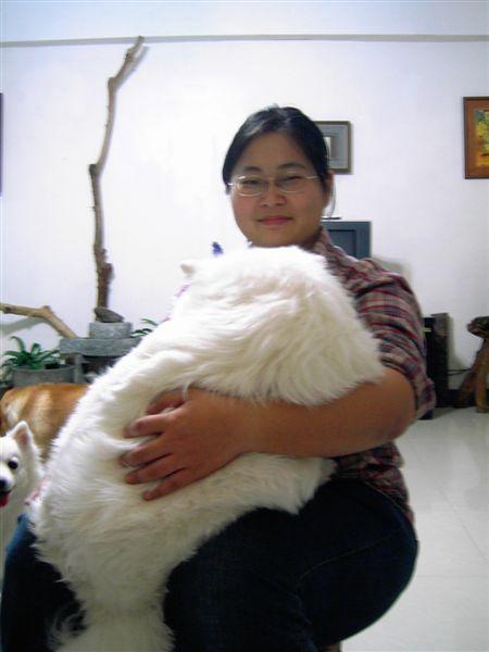 友人家的狗-白龍