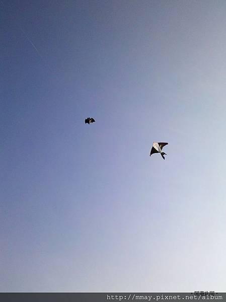 南寮漁港。放風箏