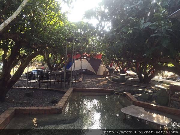宜蘭露營、宜蘭桶仔雞、宜蘭烤魚-蜜蜜雞地 2016 元旦假期 -A1區 有棚區