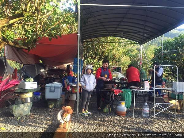 宜蘭露營、宜蘭桶仔雞、宜蘭烤魚-蜜蜜雞地 2016 元旦假期 -A2區  有棚區