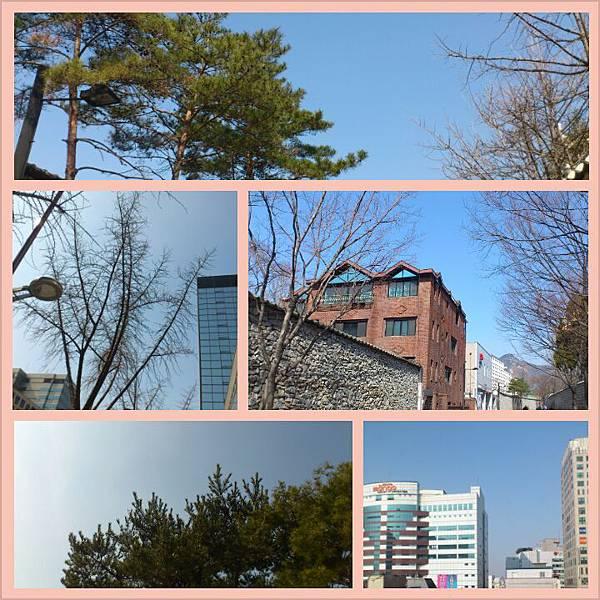 PhotoGrid_1364435168063