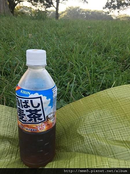 IMG_3784 (コピー).JPG
