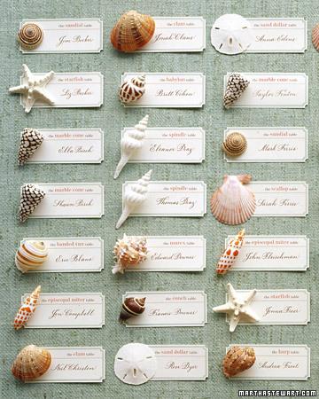 msw_summer05_shell_cards_xl