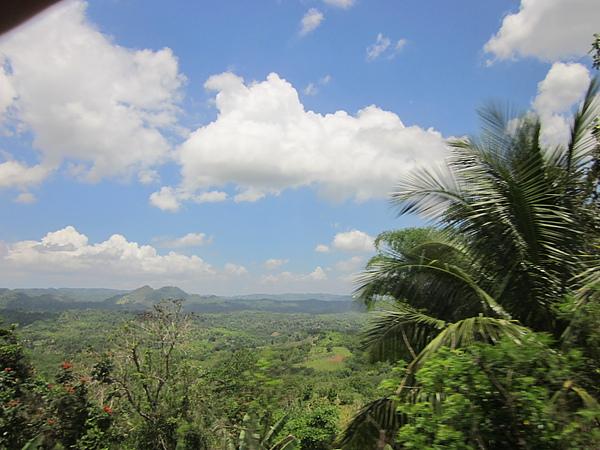 我們參加的行程是去牙買加的山上果園